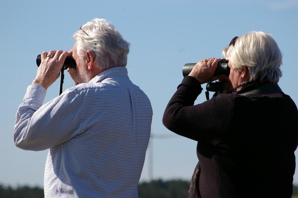 Retraite de base et retraite complémentaire : quelles différences ?